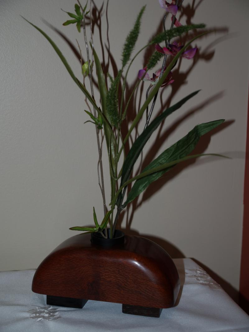Leopardwood Ikebana